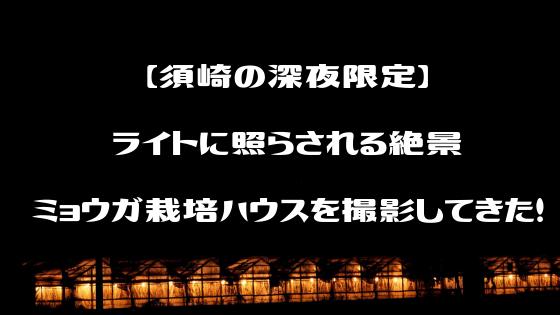 須崎市ミョウガハウス