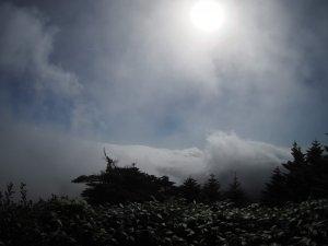 雲があっという間に稜線を飲み込みました。まるで生き物のよう